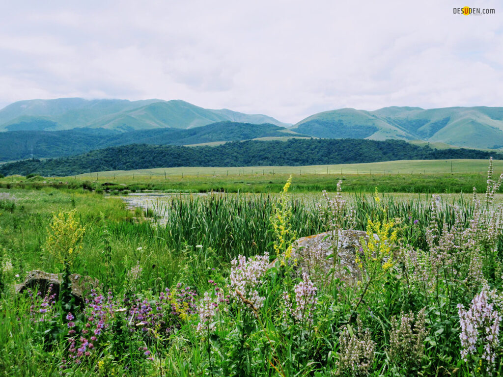 Stepanavan Lakes | Ստեփանավանի լճեր
